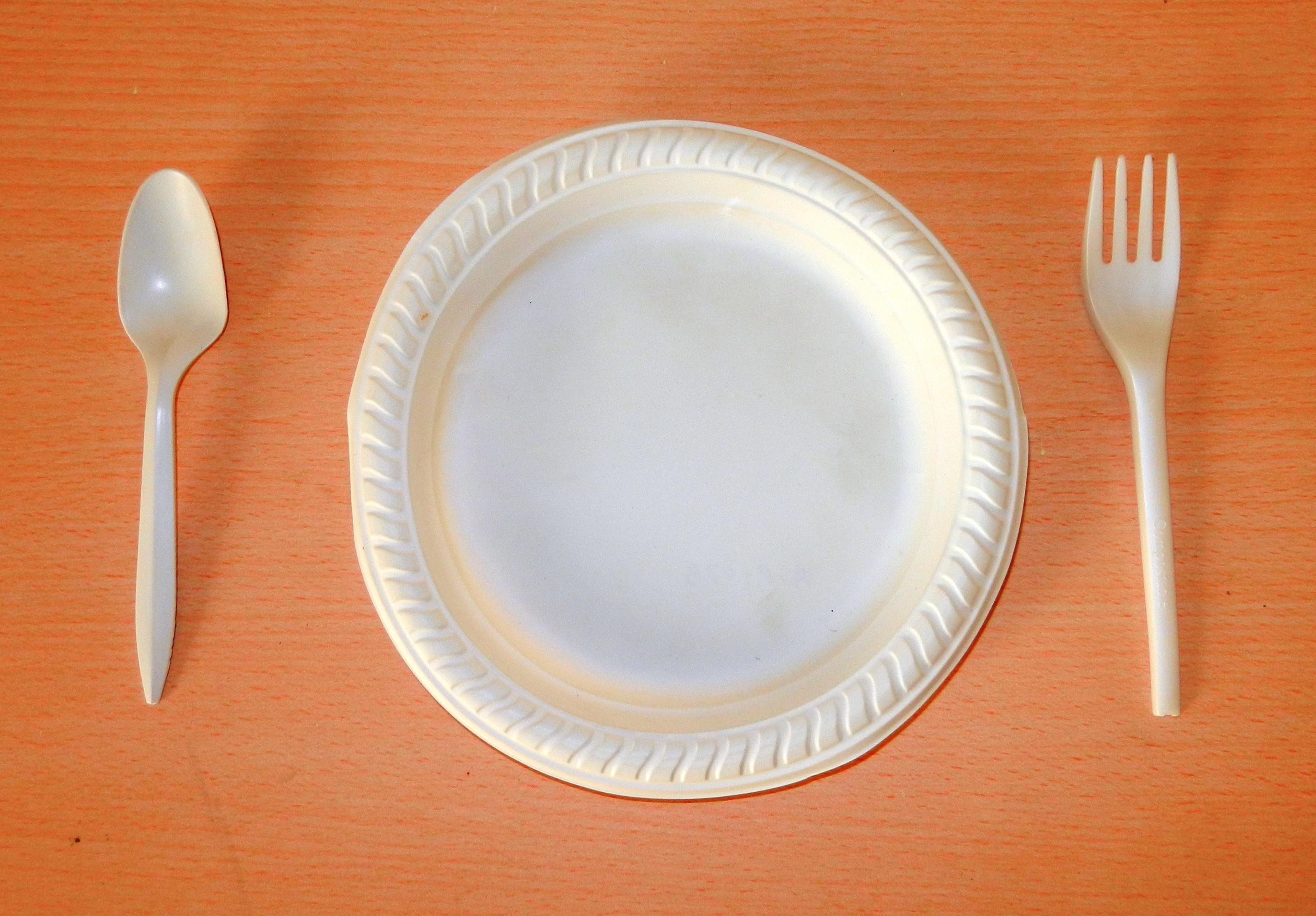 Bio Degradbale Plates And Spoons Gogreenmeans Com
